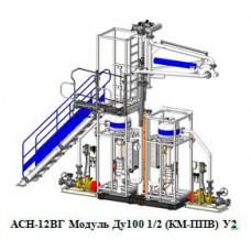 Система измерительная АСН-12ВГ Модуль Ду100 1/2